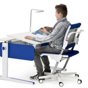 moll champion radni stol za djecu