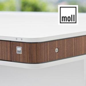 Moll T7 stol