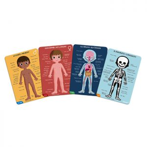 edukativne-puzzle-ljudsko-tijelo-1
