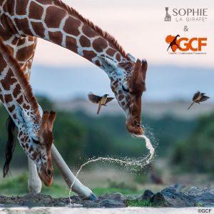 sophie-zirafa-privjesak (1)